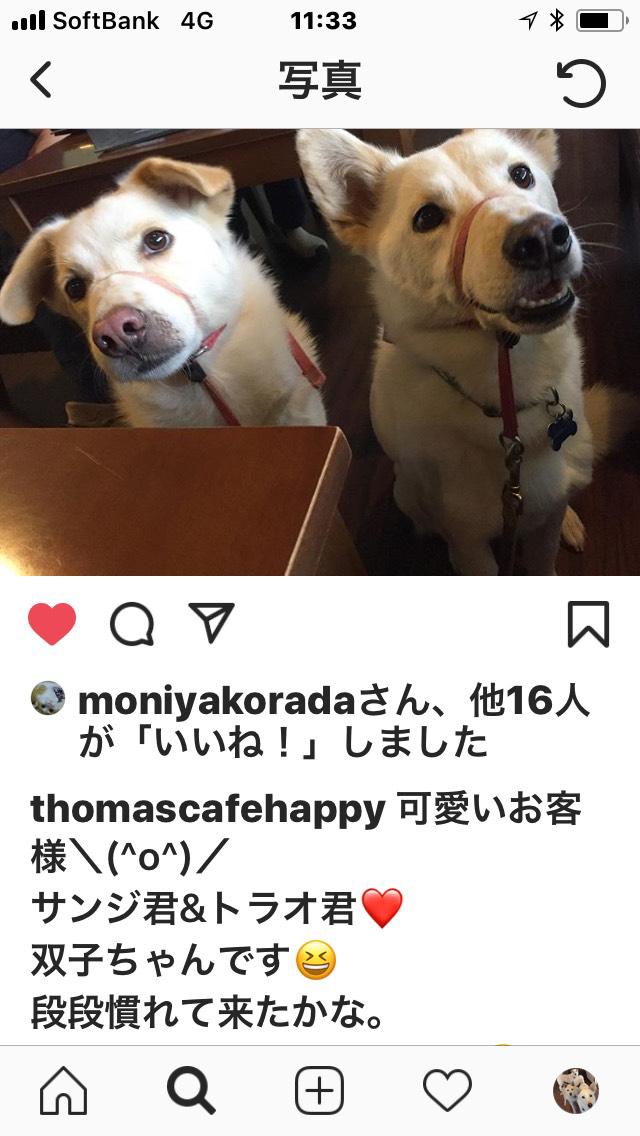 トーマスカフェ